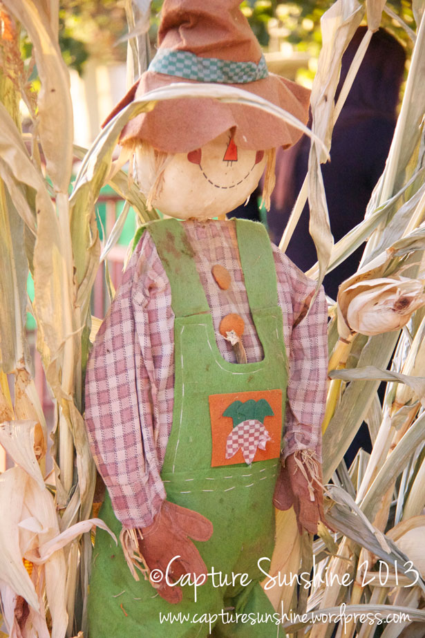bpp-scarecrow